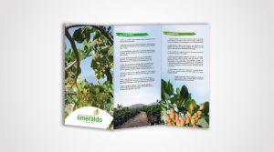 pieghevole_pistacchio smeraldo portfolio