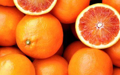 Il gusto vince anche online: il successo dell'e-commerce Fior d'Arancia